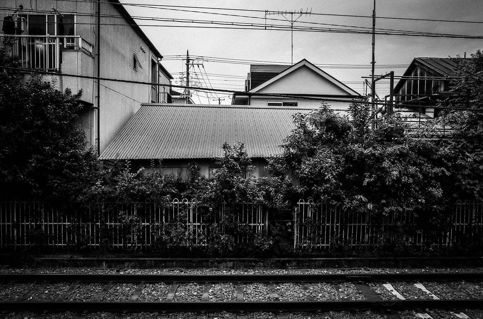 08荒川-02_Yutaro-Yamaguchi